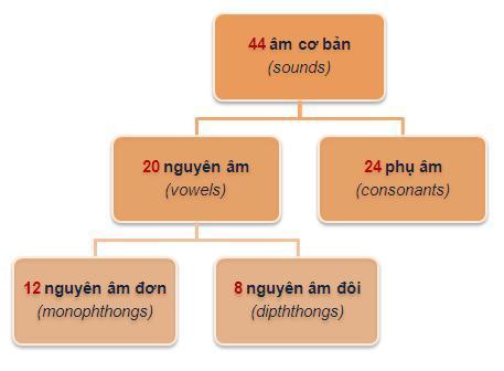 Cách phát âm chuẩn IPA