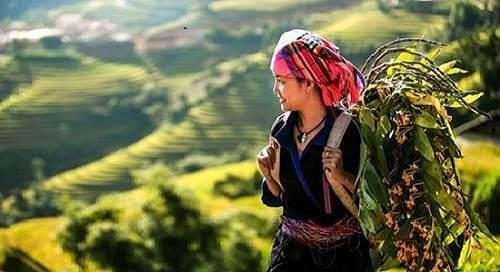 Việt Bắc đoạn 2