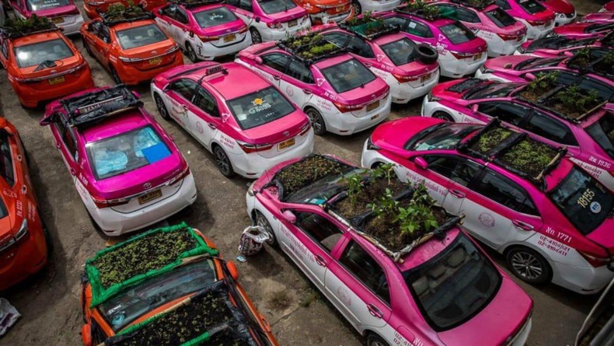 xe-taxi ở thái lan
